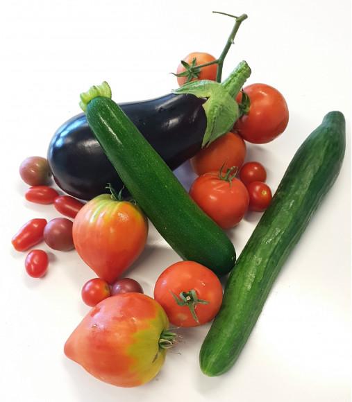 Plants de légumes fruits